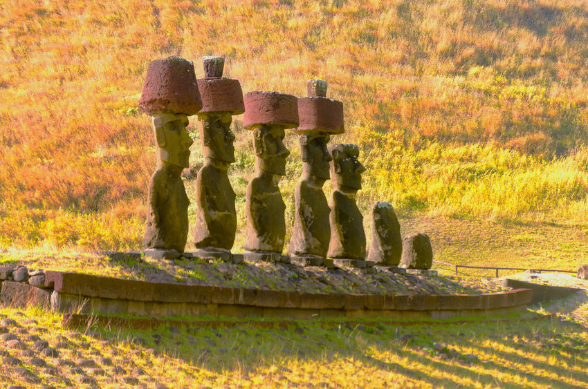 Moai statues wear Pukaos at Anakena Beach on Easter Island in Chile America Anakena Beach Chile Culture Easter Heritage Indigenous  Island Landscape Moai National Panoramic Park Polynesia Pukao Rapa Nui Sculture South Statue Stone Tourism Travel UNESCO World Heritage Site World