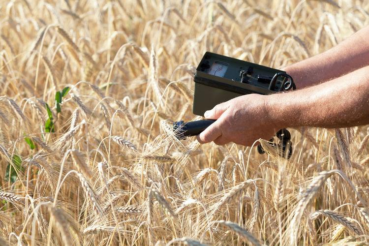 Man holding camera in field