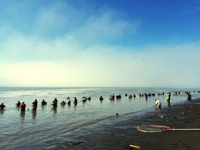 Water Sea Beach Sky Large Group Of People Nature Horizon Over Water Large Group Of Animals Beauty In Nature Cloud - Sky Bird Scenics Vacations Day Outdoors Men Real People Flying People