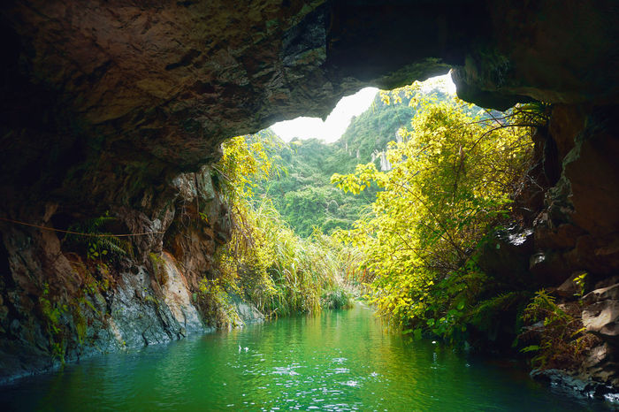 taken at Trang An, Ninh Binh, Vietnam. Beauty In Nature Cave Day Green Color Green Color Light And Shadow Natural Beauty Nature No People Outdoors PreserveNature River Rock Rock - Object Rock Formation Scenics Trang An Tranquility Travel Water