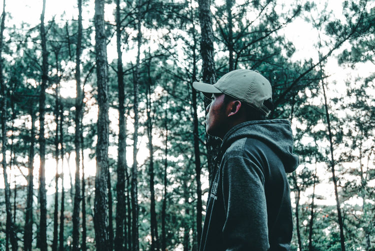 Boy in tree trunk in forest