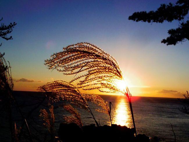 Sunrise Sea 唐桑半島 巨釜 Pentax PENTAX Q