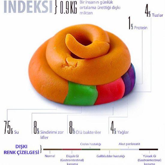 Dışkı Indeks Feces Index instagood