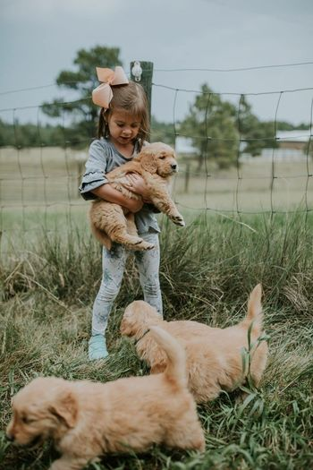 Pets One Animal Dog Domestic Animals Mammal Childhood Animal Themes Full Length Love Cute Grass Bonding Day Girls Lifestyles Happiness Puppy Nature Child Smiling