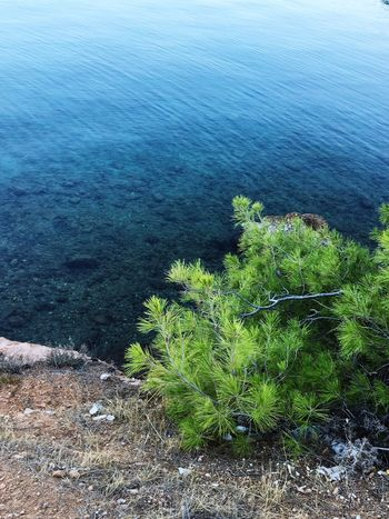 Water Sea Tranquility Nature Tranquil Scene Beauty In Nature Seascape Non-urban Scene Greece Salamina First Eyeem Photo