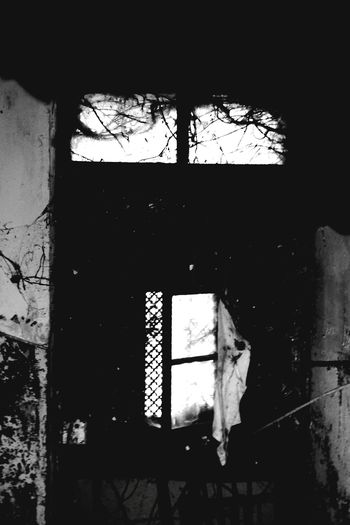 Shattered door Dark Ambient Gothic Art Ndt Window Close-up Architecture Shattered Glass Bad Condition Ruined Civilization Old Ruin Broken Destruction Cracked Weathered Run-down