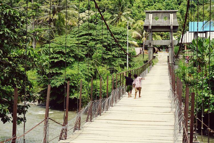 Rear view of children walking on footbridge amidst trees in park