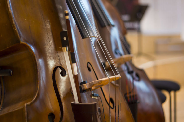 Arts Culture And Entertainment Cello Classical Music Close-up Music Musical Instrument Musical Instrument String No People String Instrument Violin Wood - Material