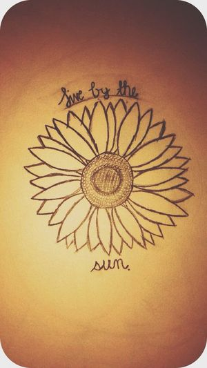 Live By The Sun Sunflower Favorite Flower
