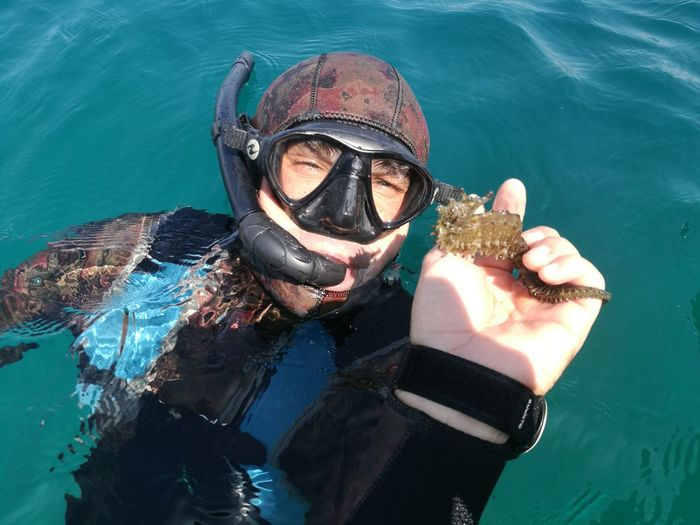 High angle portrait of man holding seahorse during scuba diving