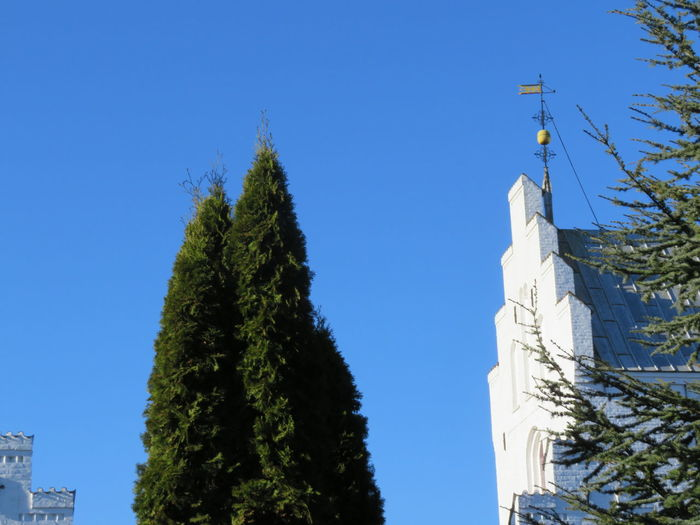 Outdoors Church Tree City Clear Sky Blue Sky Architecture Historic
