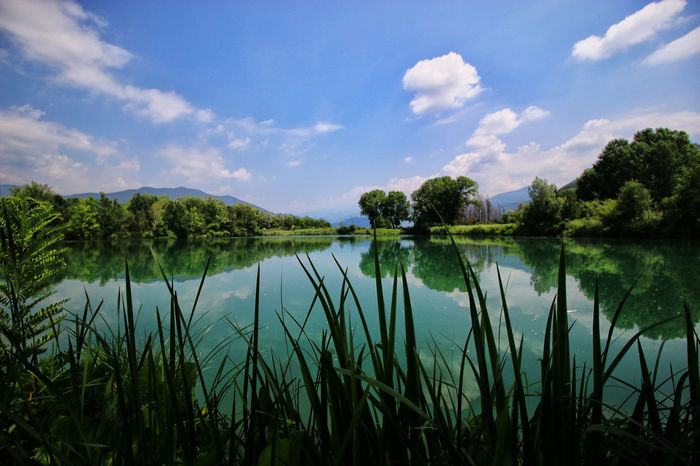 Landscape Reflection Reflection In The Water Tranquility Water Tranquil Scene Torbiere Sky Paesaggio No People Torbieredelsebino Clouds And Sky Landscape_photography Nature Green Tree Beauty In Nature Acqua Verde Landcsape Montagne Mountain Cloud - Sky Riflessosullacqua