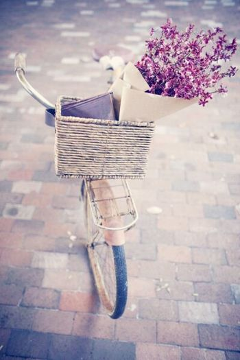 Vintage Bike Flowers In Basket