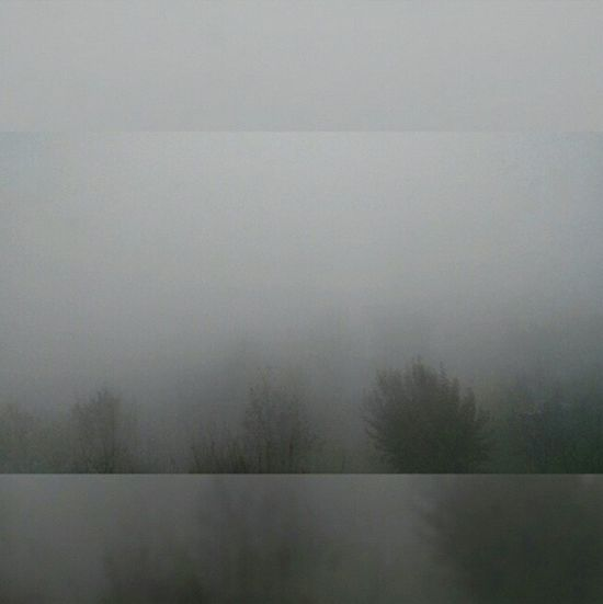 Myphoto Nebbia Nuvoloso Clouds MyHOUSE Trees Grey Panorama Photography I Love It ❤
