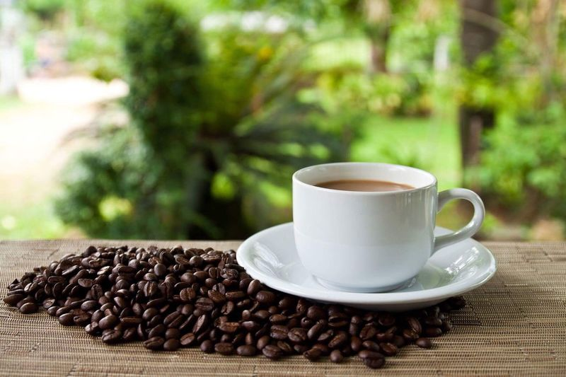 Coffee set Coffee Cup Coffee - Drink Cup Table Food And Drink Roasted Coffee Bean Drink Freshness No People Refreshment Saucer Close-up Focus On Foreground Day Coffee Bean Raw Coffee Bean Outdoors Tree Nature Mocha