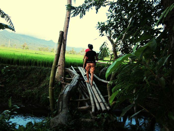 experiencing the province life Provinceofleyte Ricepaddies PromdiLife PromdiPLEASURES Here Belongs To Me