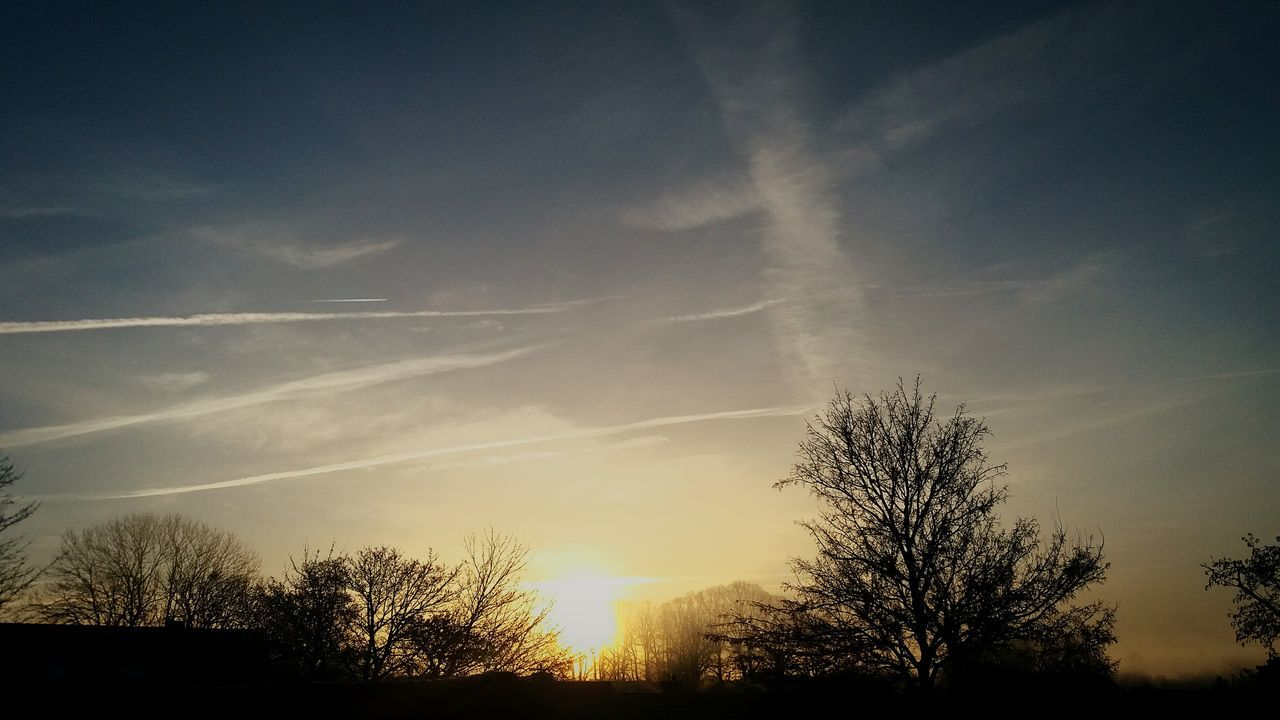 beauty in nature, nature, tree, scenics, silhouette, tranquility, tranquil scene, sky, no people, outdoors, low angle view, sunset, bare tree, landscape, vapor trail, contrail, day