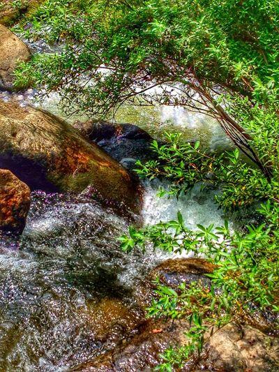 Walkwithme Creekside Trail Morning Light Natural Beauty Water Flowing Rock - Object Motion Blur Waterfall #water #landscape #nature #beautiful Japan Photography InKaratsu