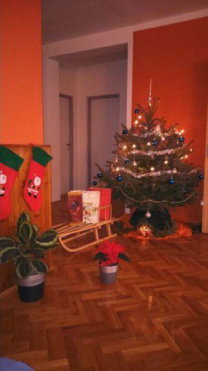 Marry Christmas :-D Osijek, Croatia