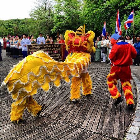 Vesakh 2012 Löwentanz Vesakh Vietnam Munich Buddhism Westpark