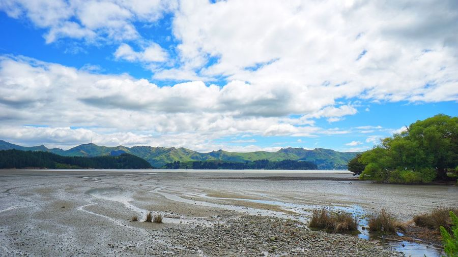 mud flat of meandering river in Christchurch uphill. Portfolio Of Arif Wibowo Photograph By Jgawibowo Portfolio Of Jgawibowo Photography By Jgawibowo Nature Green Green Nature River Mud Flat Water Christchurch New Zealand Tree Mountain Water Beach Sky Landscape Cloud - Sky Pebble Mountain Range Snowcapped Mountain Countryside Tranquil Scene