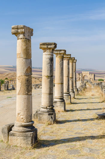 Old pillars at roman ruins of volubilis, morocco, north africa