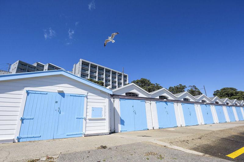 Bird flying over built structure against blue sky