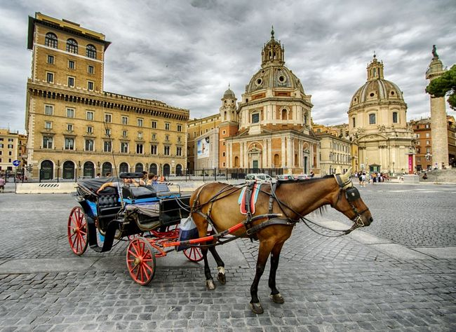 Calesse in Piazza Venezia Roma Horse Horse Cart Horsedrawn Working Animal Transportation History Carriage Architecture Mode Of Transport Domestic Animals Travel Destinations Travel Sky Religion Cloud - Sky Animal Themes Built Structure Mammal Building Exterior Spirituality Piazza Venezia Calesse Roma