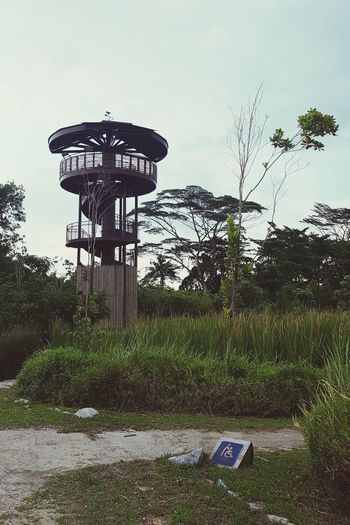 the tree house Towers Tree EyeEm Nature Lover Tree House♥ Sky Lookout Tower Weather Vane