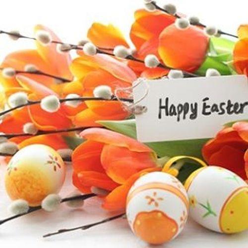 Buona Pasqua a tutti! 🐣 Buonapasqua Happyeaster Froheostern Felizpascua Srecanuskrs Joueusespaques Kalopaska Boapascoa Zaligpaasfeest Giadpask