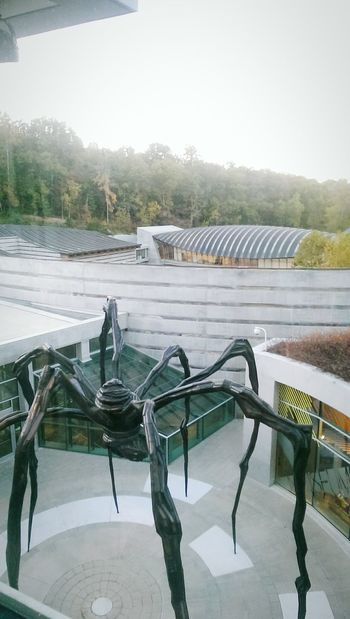 Crystal Bridges before it was too cold to be outside without a jacket. Crystal Bridges Crystal Bridges Museum Of American Art Nwarkansas