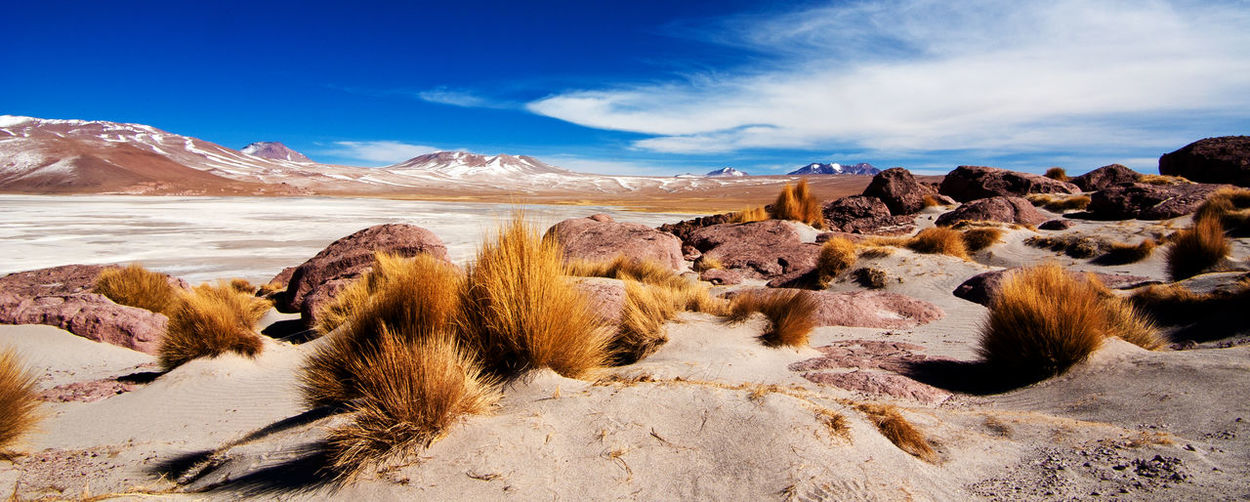 Beauty In Nature Bolivia Day Environment Extreme Terrain Landscape Nature Outdoors Salar De Uyuni Salt Scenics Sky South America Travel Destinations Uyuni Salt Flat