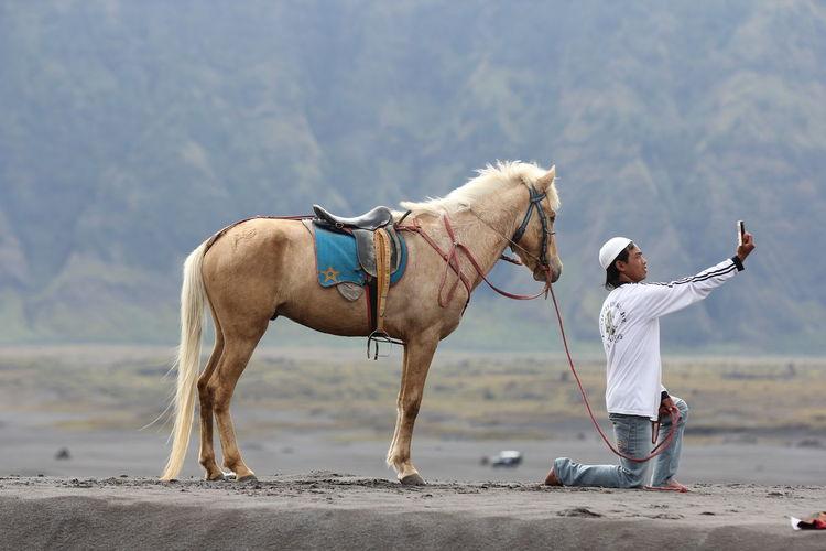 Bromo Domestic Horse Human Interest Land Nature Outdoors Selfie