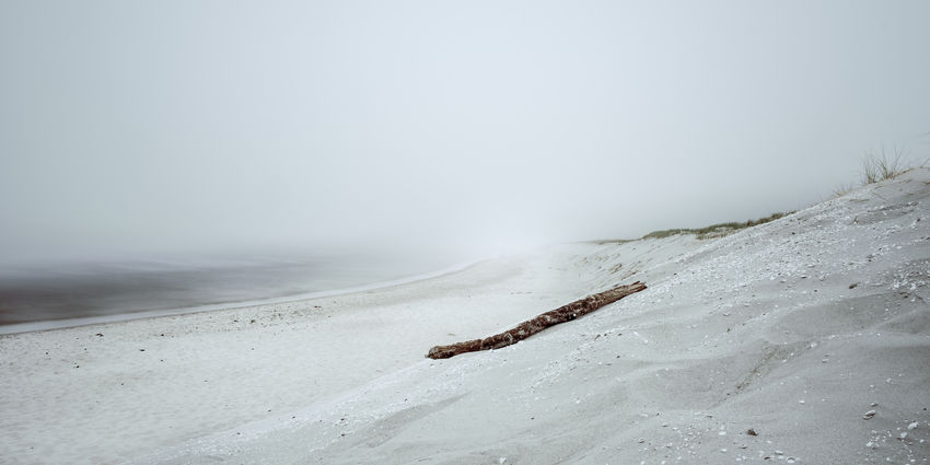 Foggy beach. Baltic Sea Baltic Sea Germany Dunes Mecklenburg-Vorpommern National Park Weststrand Beach Beauty In Nature Day Driftwood Fog Land Landscape Marine Nature No People Sand Sea Sky Water