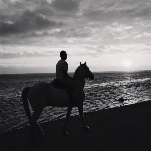 Lonely Rider Sihlouette Horses Blackandwhite Photography #Fiji Humansoffiji Sunset_collection