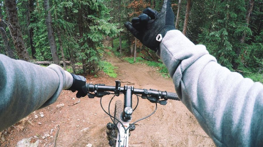 Cropped Image Of Hand Riding Bicycle On Pathway In Forest