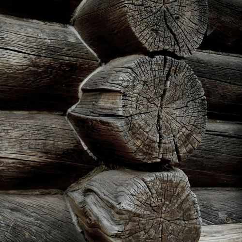 Close-up of wooden logs