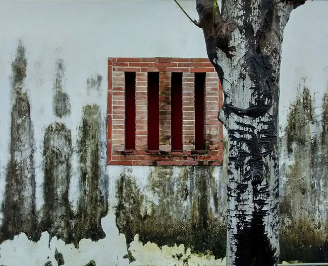 White Wall Tree