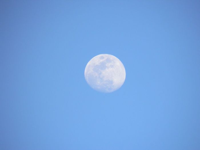 There's A Moon Out Tonight! Clear Sky Planetary Moon Astronomy Beauty In Nature No People