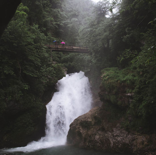 Waterfall Adventure Beauty In Nature Day Foggy, Fog, Cita, Milano, Milan, Italy, Sad Forest Growth Landscape, Seascape, Peggy's Cove, Peaceful Landscape, Trees, Autumn, Summer, Sun, Sea, Sky Clouds, Mushrooms, Beauty Of Nature, Mood Moody Motion Mountain Nature Nature, Pure, Asia, Vietnam , Tropical, Farm, Plant, Orchid, Flower, Beautiful, Blossom, Blooming, Leaf, Purple, Sunlight, Wallpaper, Closeup, Floral, Stem, Buds, Botany, Macro, Branch, Bright No People Outdoors River Scenics Tranquil Scene Tree Water Waterfall Waterfall #water #landscape #nature #beautiful