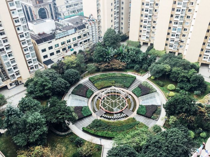 Garden... Arc+ Cityscape Built Structure Building Exterior Architecture Plant Day Growth High Angle View Building No People Green Color Nature Tree City Outdoors Pattern Garden Design Formal Garden Shape Belief A New Perspective On Life