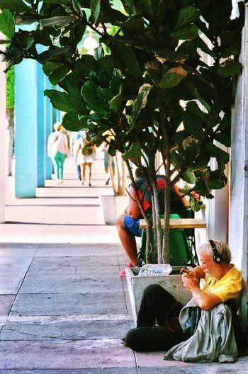 Urban Beats Beats By Dre Streetphotography Street Photography Streetphoto_color Venice Beach Views From The Sidewalk Filmisnotdead Kodak Portra Homeless BEATS