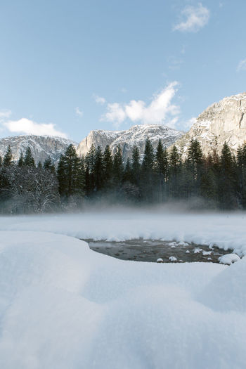 Scenic View Of Snowy Field By Pine Trees At Yosemite Valley