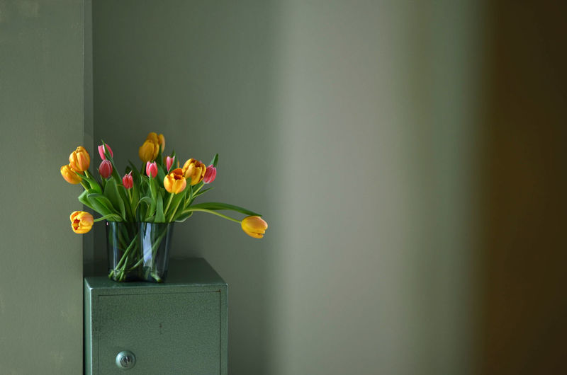 Close-up of yellow tulip in vase against wall