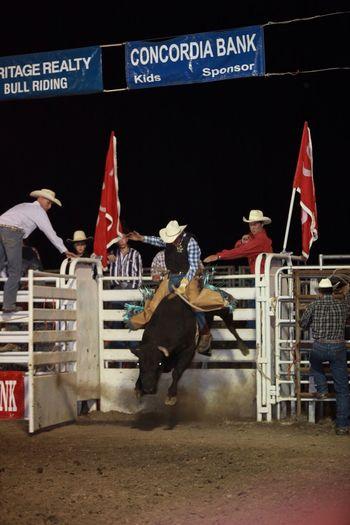 Rodeo Hang On Cowboy Cowboylife Bull Riding  Cowboys Dream