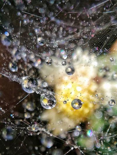 #waterdrop