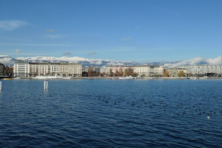 Lake Geneva and snowy mountains EyeEm Selects Water Architecture Building Exterior Built Structure Sky City Waterfront Building Sea Nature Day Cloud - Sky No People Blue Cityscape Residential District Rippled Scenics - Nature Outdoors