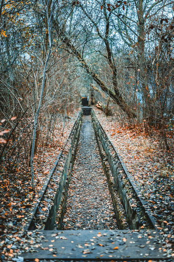 Autumn Autumn Colors Day HDR Hidden Places Into The Wild Into The Woods Leaves Metal Mystery Atmosphere Nature Nature No People Outdoor Photography Outdoors Rail Transportation Railroad Track Sky Train Tracks Tree