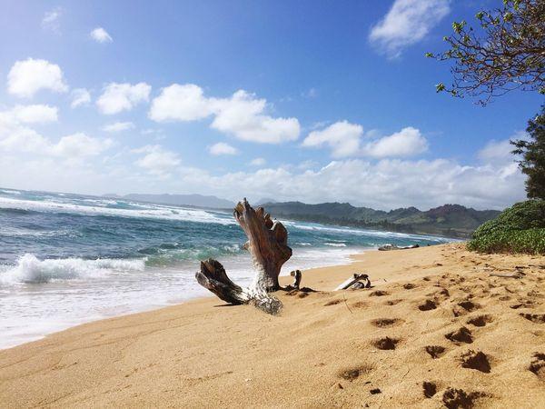 Kauai Enjoying Life Beachday