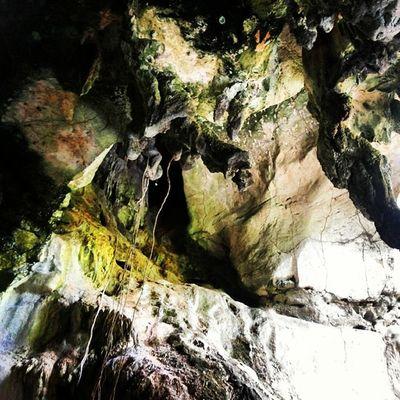 The Cave : Part 2 Asterinasazalie Instamoment Instaasterinasazalie Instacave instamoment pulaulangkawi guakelawar langkawiisland picoftheday lifewithcolors beautifulmoment holiday vacation